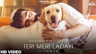 Teri Meri Ladayi Lyrics in Hindi