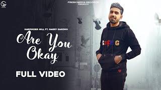 Are You Okay Lyrics In Hindi