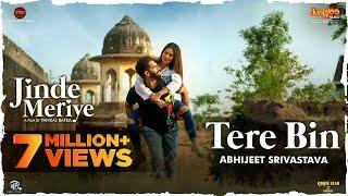 Tere Bin Lyrics In Hindi